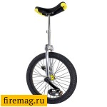 Unicycle Чё 20""